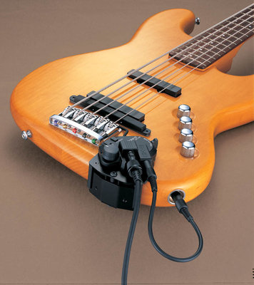 Roland GK 3B Divided Pickup for Bass