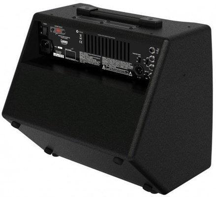 Laney A1+ Acoustic Amplifier