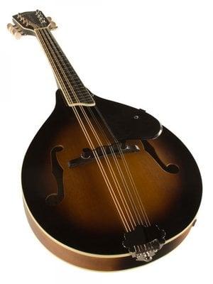 Gretsch G9311 New Yorker Supreme A/E Mandolin