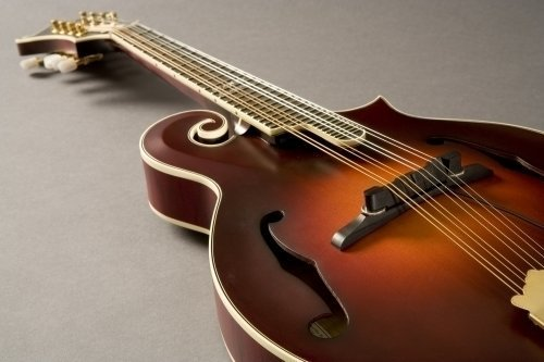 Fishman M-300 Nashville Series Archtop Mandolin Pickup