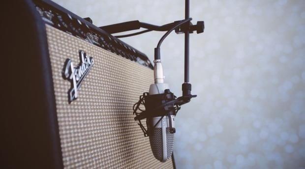Wishbone The Amp Hook