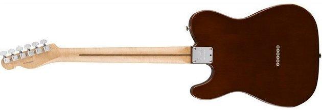 Fender 2017 LTD Malaysian Blackwood Telecaster 90 Natural