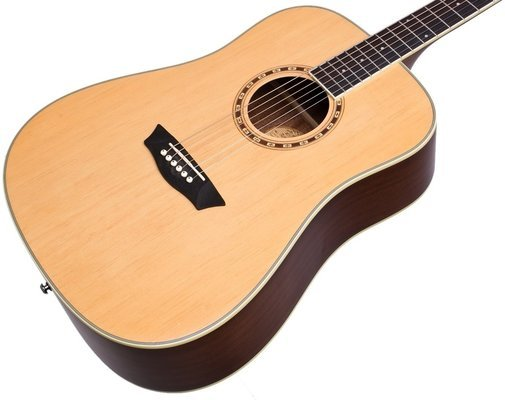 Washburn WD10NS-A-U