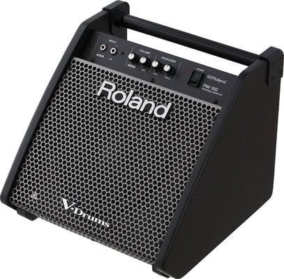 Roland PM-100