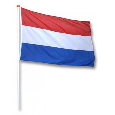 Talamex Netherlands Steag național