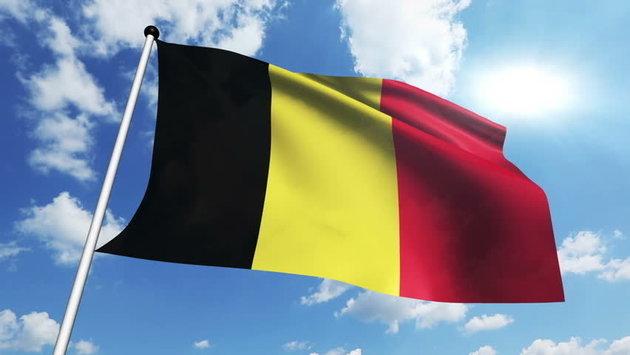 Talamex Belgium Steag național