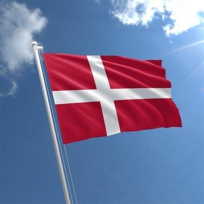 Talamex Flag Denmark 30x45 cm