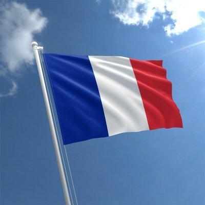 Talamex Flag France 40x60 cm