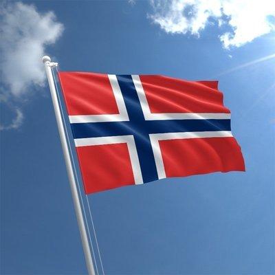 Talamex Bandiera nazionale Norway 20x30 cm
