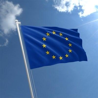Talamex Flag EU 40x60 cm