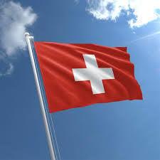 Talamex Flag Switzerland 20x30 cm