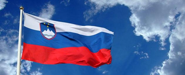 Talamex Flag Slovenia 30x45 cm