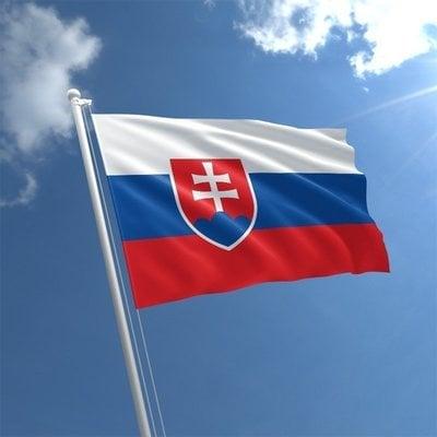 Talamex Národná vlajka - Slovensko 20x30cm