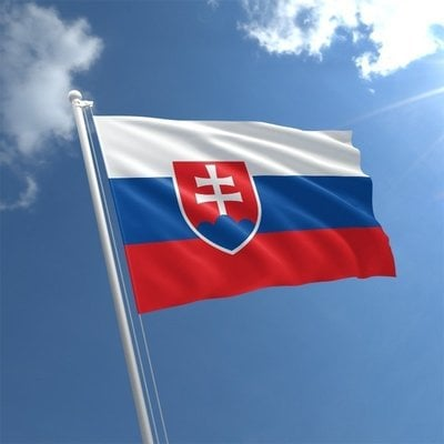 Talamex Flag Slovakia 20x30 cm