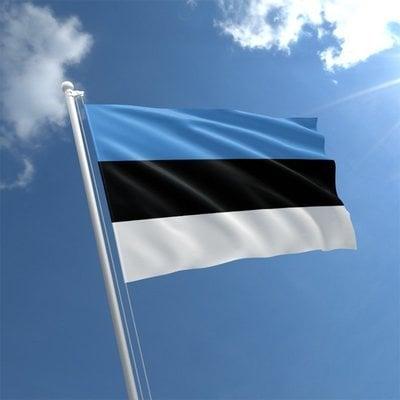 Talamex Bandiera nazionale Estonia 20x30 cm