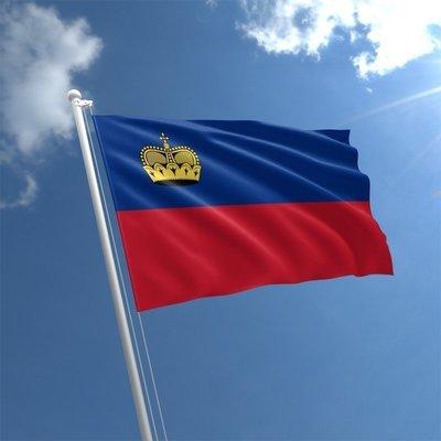 Talamex Flag Liechtenstein 20x30 cm