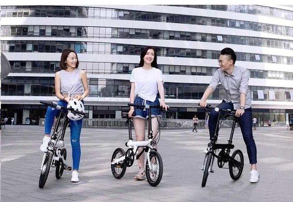 Xiaomi Mi QiCYCLE Electric Folding Bike