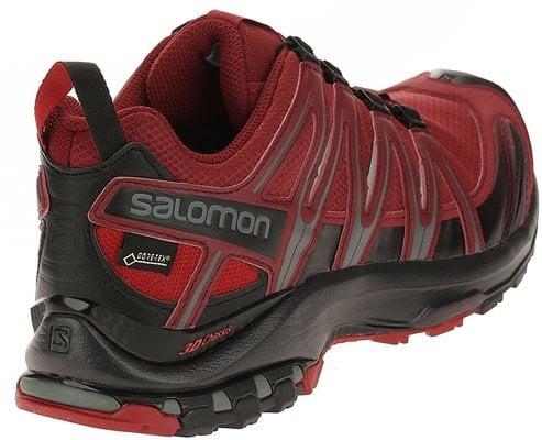 Salomon XA Pro 3D GTX Red Dahlia/Black/Barbados Cherry 10