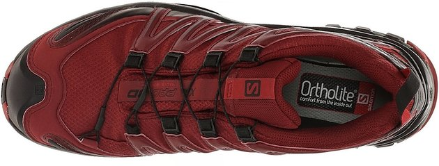 Salomon XA Pro 3D GTX Red Dahlia/Black/Barbados Cherry 11