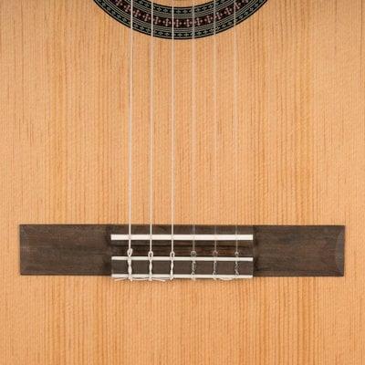 Cascha HH 2140 EN Classical Guitar 3/4 Bundle