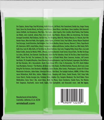 Ernie Ball 2230 12-string Slinky Nickel Wound
