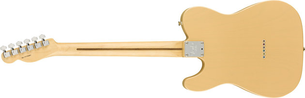Fender Lightweight Ash American Professional Tele MN Honey Blonde