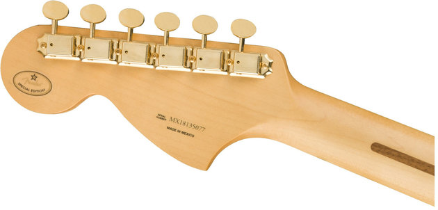 Fender Mahogany Blacktop Stratocaster PF 3H Olympic White Gold