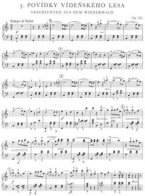 Johann Strauss U krále valčíku (10 nejoblíbenějších valčíků pro klavír v snadném slohu)
