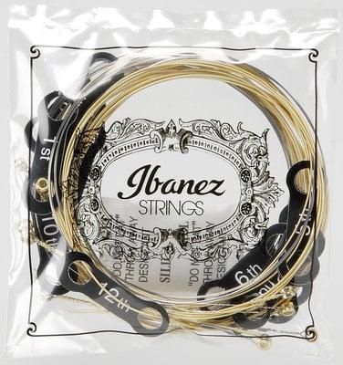 Ibanez IACS12C