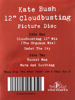 Kate Bush Cloudbusting (Picture Disc)