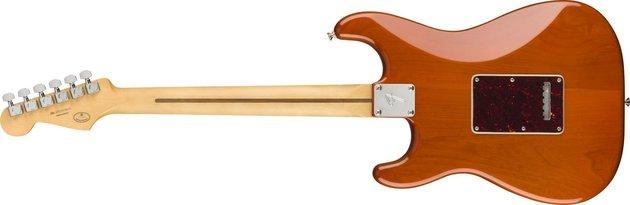 Fender Player Stratocaster MN Aged Natural