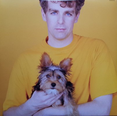 Pet Shop Boys Introspective (2018 Remastered Version)