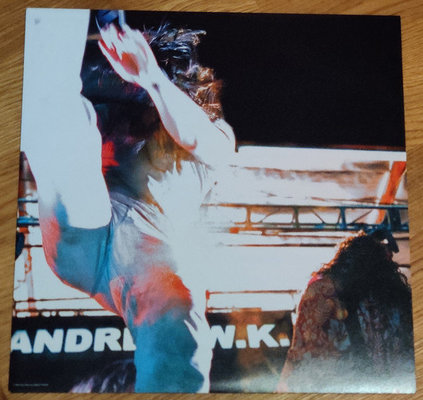 Andrew W.K. I Get Wet (Vinyl LP)