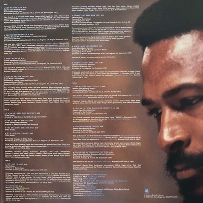Marvin Gaye You're The Man (2 LP)