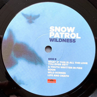 Snow Patrol Wildness (Vinyl LP)