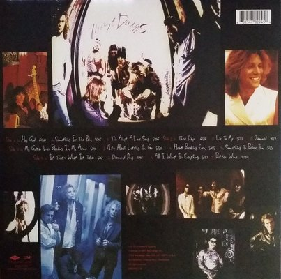 Bon Jovi These Days (2 LP)