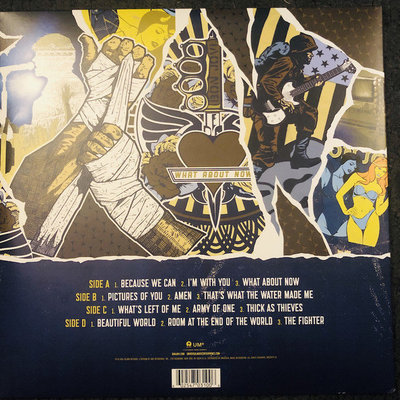Bon Jovi What About Now (2 LP)