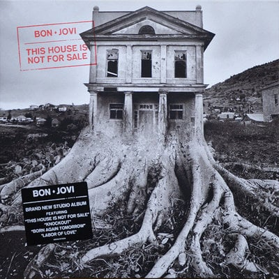 Bon Jovi This House Is Not For Sale (Vinyl LP)