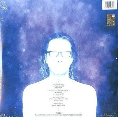 Steven Wilson To The Bone (2 LP)