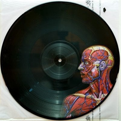 Tool Lateralus (2 Picture Disc LP)