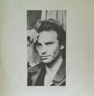 Sting Nothing Like The Sun (2 LP)