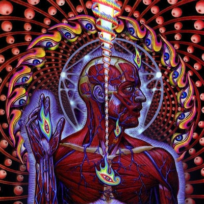 Tool Lateralus Muzyczne CD