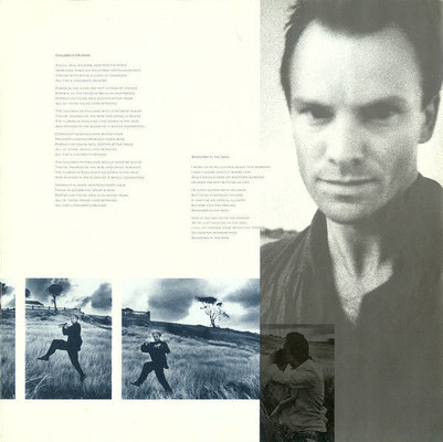 Sting The Dream Of The Blue Turtles (Vinyl LP)