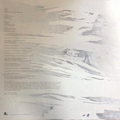Joe Satriani What Happens Next (2 LP)