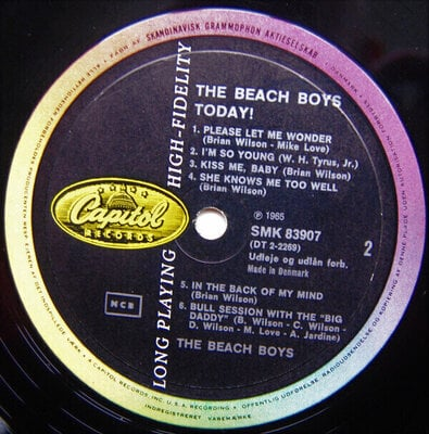 The Beach Boys Today! (Mono) (Vinyl LP)