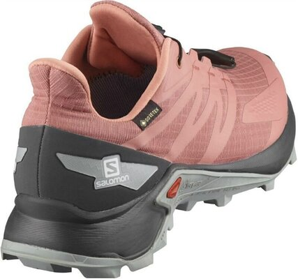 Salomon Supercross Blast GTX W Brick/Dust/Ebony/Quarry 4,5 UK