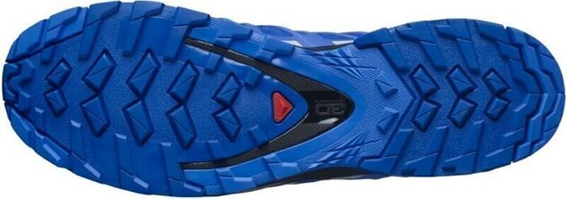 Salomon XA Pro 3D v8 GTX Outdoor incaltaminte
