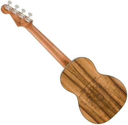 Fender Dhani Harrison Uke WN Tenor ukulele Turquoise