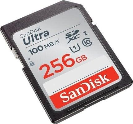 SanDisk Ultra SDxC UHS-I 256 GB SDSDUNR-256G-GN6IN