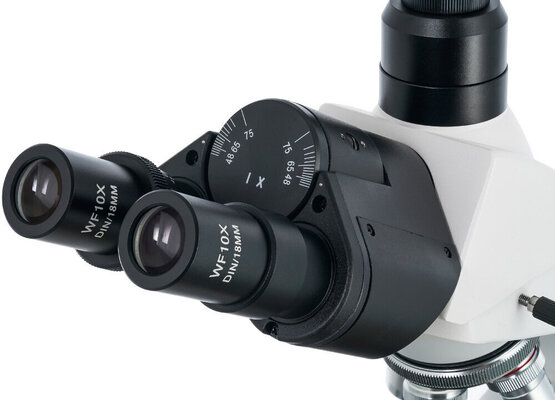 Levenhuk 900T Trinocular Microscope